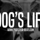 Rap beat Instrumental Dogs Life Profetesa Beats hip-hop beats with hook