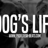Rap beat Instrumental Dogs Life Profetesa Beats hip-hop beats with hook