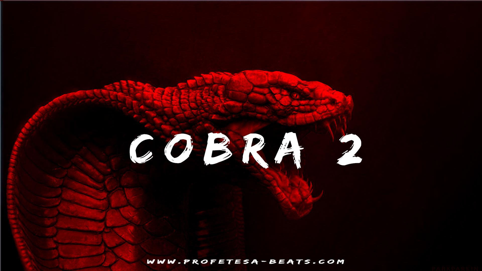 Cobra pt. 2