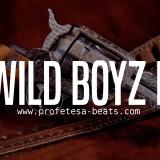hard-aggressive-rap-beat-wild-boyz-2-profetesa-beats-hip-hop-instrumentals